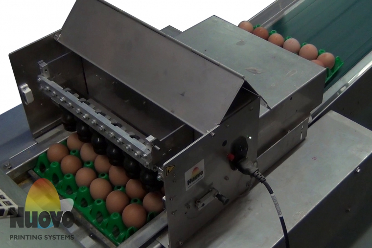 Nuovo Egg Printing and Egg Stamping Systems - Easy Stamp Stempelaar R6 op Farmpacker
