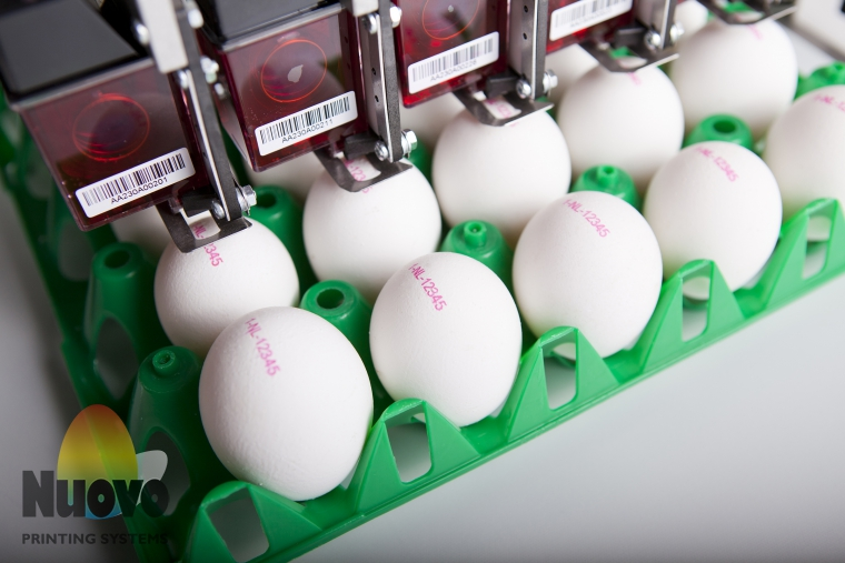 Nuovo Egg Printing and Egg Stamping Systems - Каплеструйный маркиратор BAN5