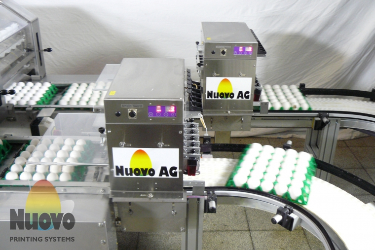 Nuovo Egg Printing and Egg Stamping Systems - Egg Jet Printer R6