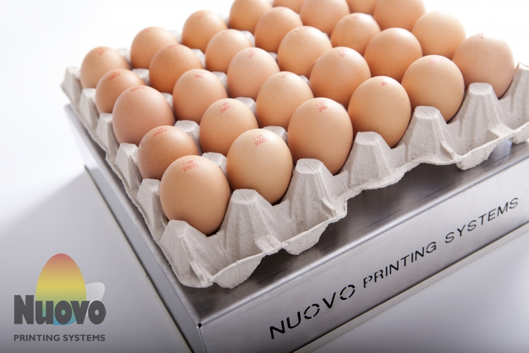 Nuovo Egg Printing and Egg Stamping Systems - 便捷印章 EMS30