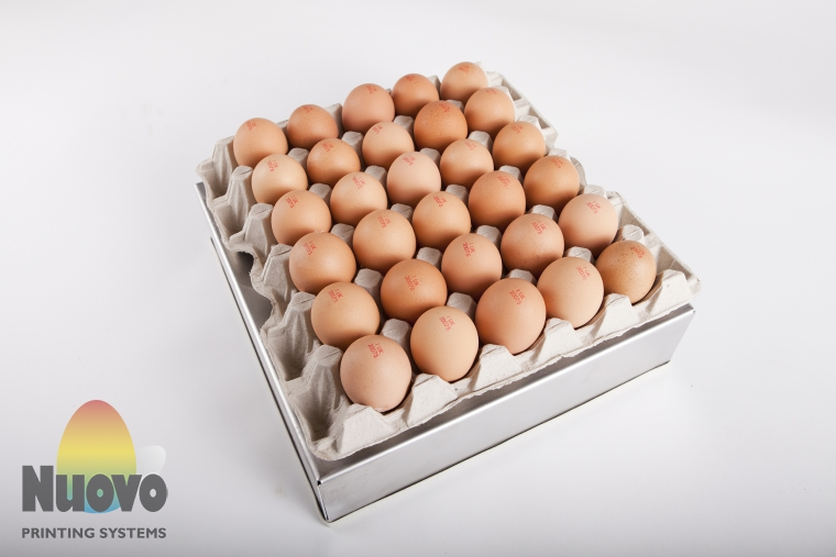 Nuovo Egg Printing and Egg Stamping Systems - Easy Stamp Stempelaar EMS12