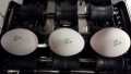 Nuovo Egg Printing and Egg Stamping Systems - Tamponneuse Easy Stamp SOR sur table d'alimentation de calibreuse