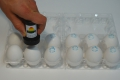 Nuovo Egg Printing and Egg Stamping Systems - Easy Stamp Eierstempel EMS1